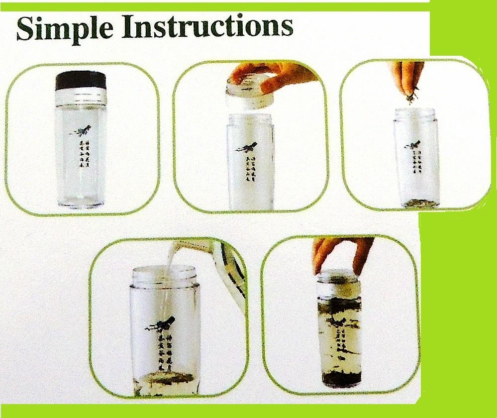 BPA Free Travel Tea Mug