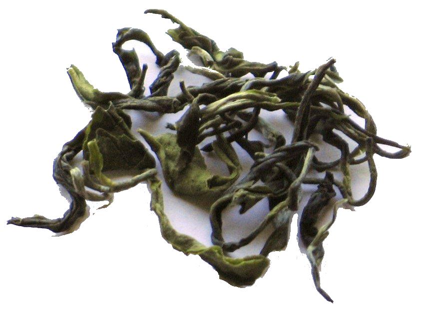 bulk green tea
